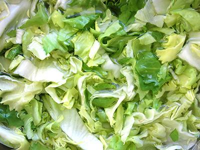 野菜や果物の予備洗浄に